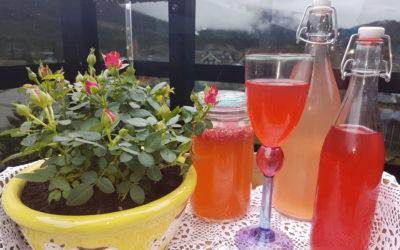 Fermenterte drikker